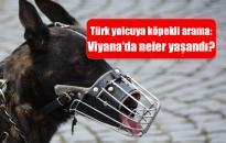 Köpek