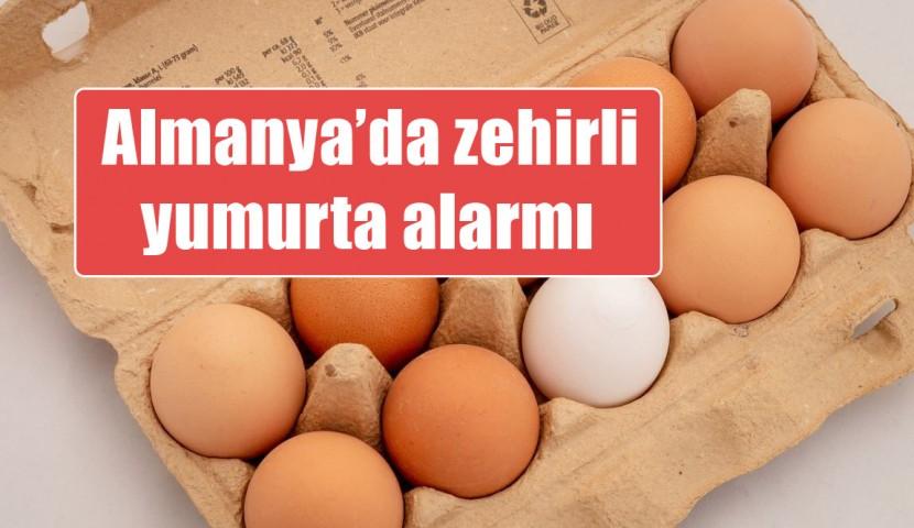 Yumurta