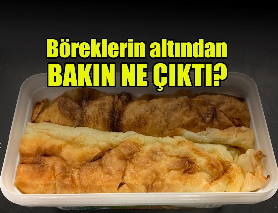 Türk,Altın,Yolcu