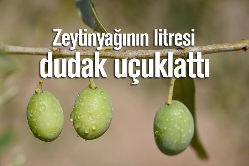 litre,zeytinyağı