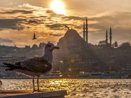 Türkiye otellerinde